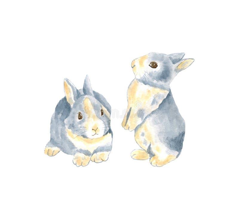 Vattenfärgillustration med den lilla kaninen gullig kaninwhite f?r bakgrund Isolerad illustration för vattenfärgkanin hare på whi royaltyfria bilder