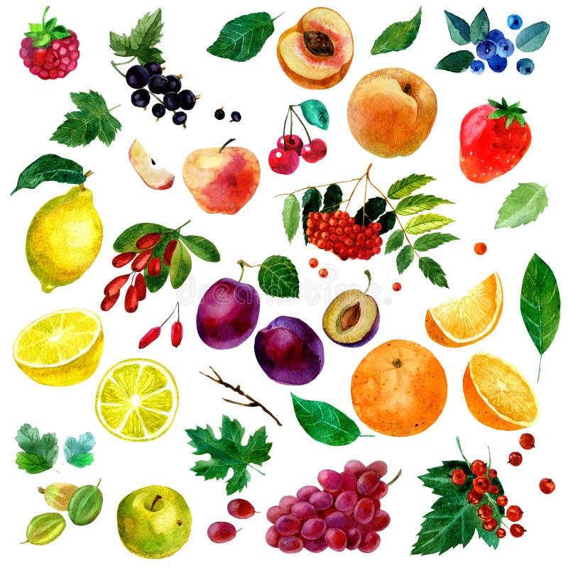 Vattenfärgillustration, uppsättning av vattenfärgfrukt och bär, delar och sidor, persika, plommon, citron, apelsin, äpple, druvor royaltyfri illustrationer