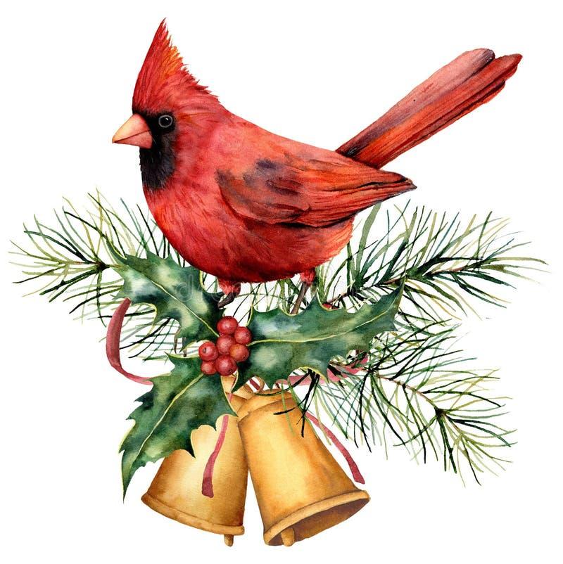 Vattenfärgjulkort med den röda kardinalen och vinterdesign Handen målade fågeln med klockor, järnek, den röda pilbågen, bär stock illustrationer