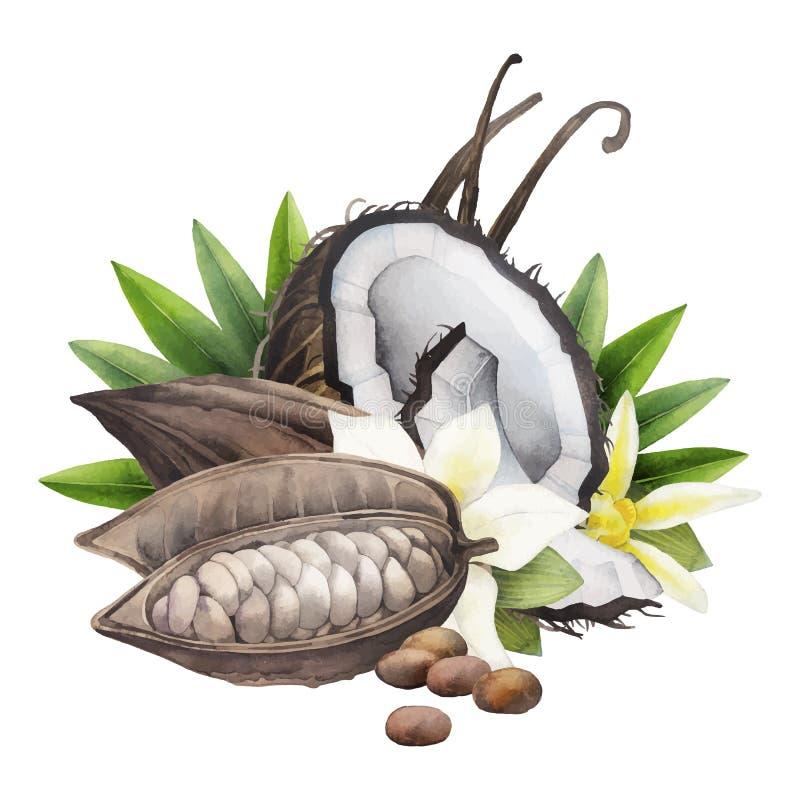 Vattenfärgkakaofrukt, kokosnöt och vanilj royaltyfri illustrationer