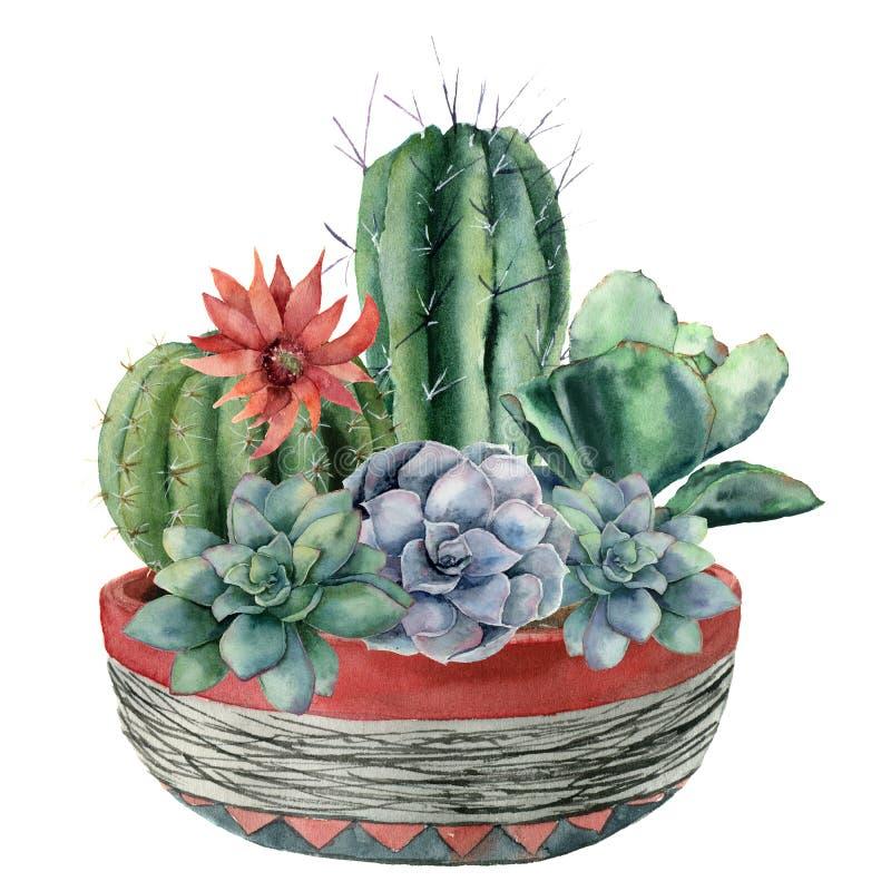 Vattenfärgkaktus med suckulenten i en kruka Räcka målad cereus, echeveriaen, echinocactusgrusonii med rött och blått royaltyfri illustrationer