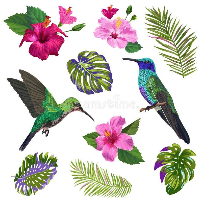 Vattenfärgkolibri-, HibisÑ  oss blommor och tropiska palmblad Hand drog exotiska Colibri fåglar och blom- beståndsdelar vektor illustrationer