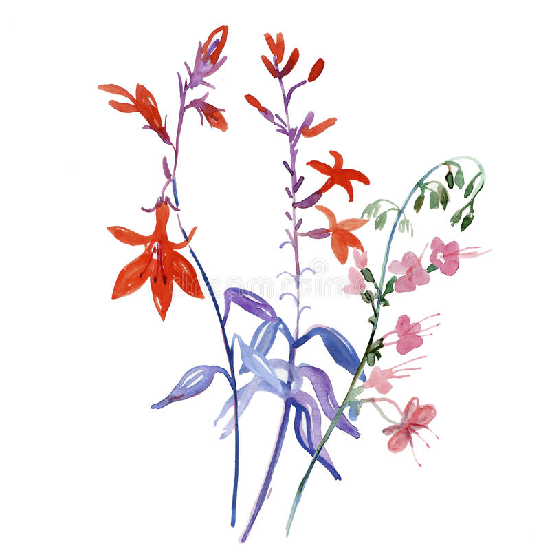 Vattenfärgkort med härliga blommor royaltyfri illustrationer