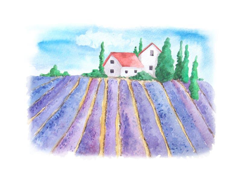Vattenfärglandskap med lavendelfältet stock illustrationer