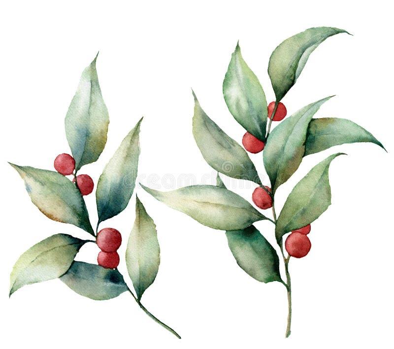 Vattenfärglingon med bär Handen målade den blom- illustrationen med sidor och filialer som isolerades på vit royaltyfri illustrationer