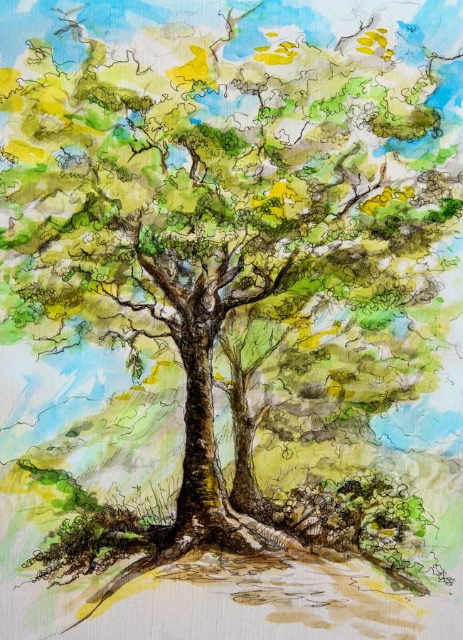 Vattenfärgmålning av ett träd på en vårdag stock illustrationer