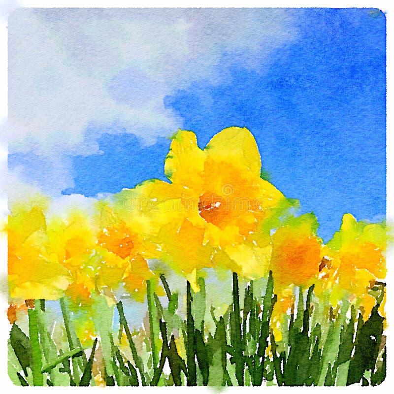 Vattenfärgmålning av påskliljor på en solig dag royaltyfri illustrationer