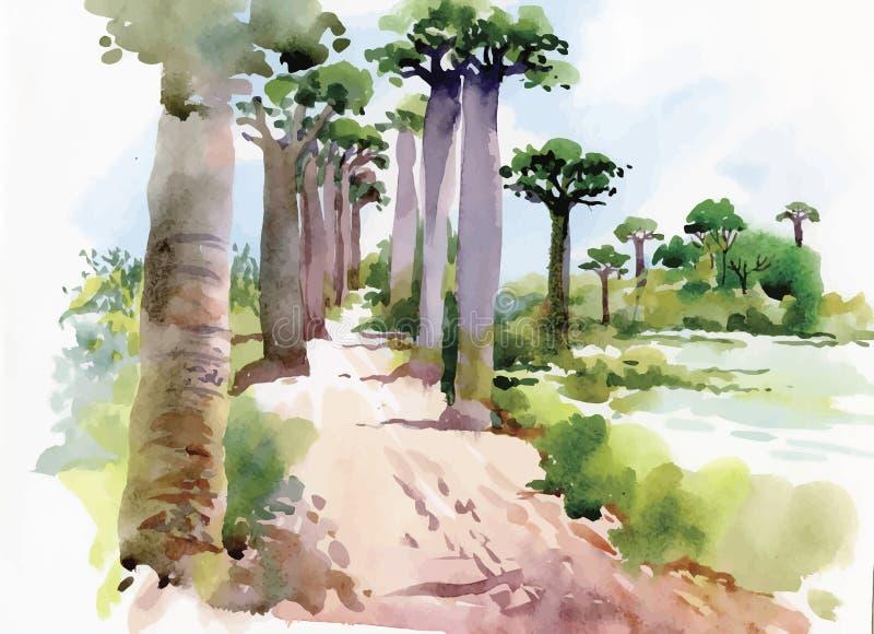 Vattenfärgmålning av sommarlandskapet parkerar vägen med trädvektorillustrationen royaltyfri illustrationer