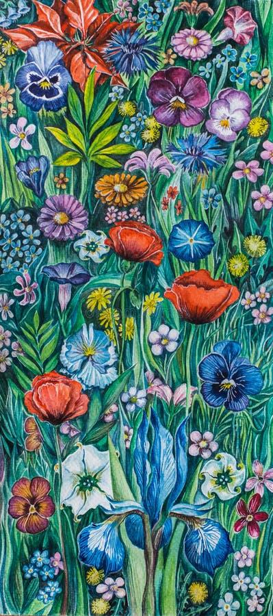 Vattenfärgmålning blommar Poppy Iris Daisy arkivbild