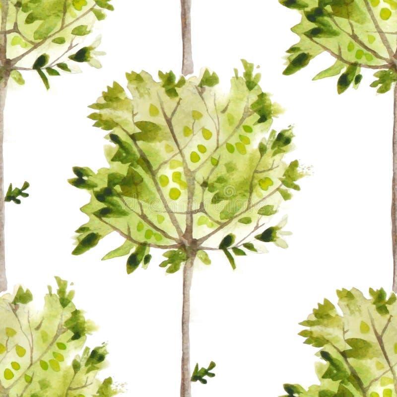 Vattenfärgmodell med olivträd royaltyfri illustrationer