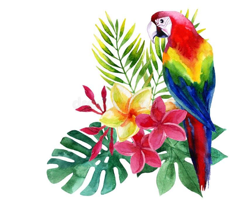 Vattenfärgpapegoja med exotiska blommor och sidor vektor illustrationer