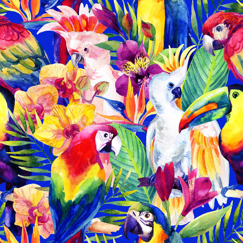 Vattenfärgpapegojor med den sömlösa modellen för tropiska blommor royaltyfri illustrationer