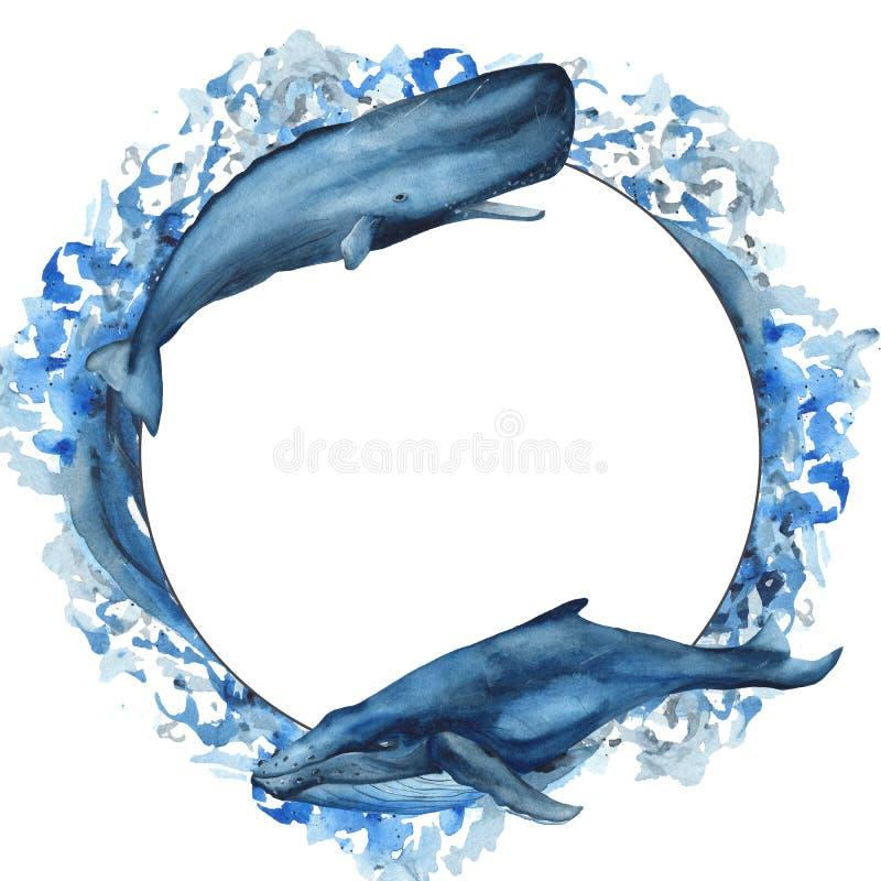Vattenfärgram med valet, spermaval, narval, fisk royaltyfri illustrationer