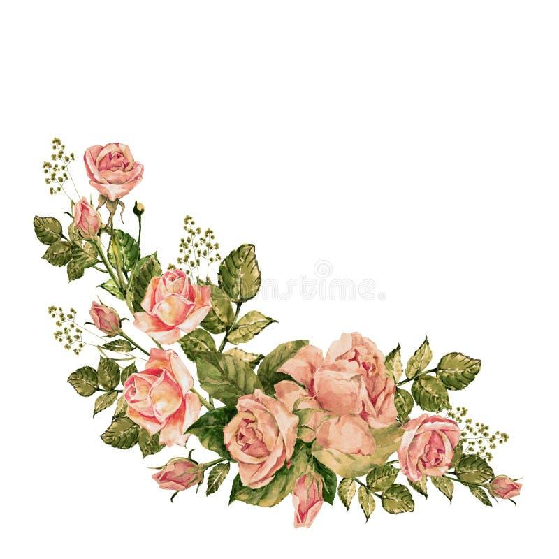 Vattenfärgrosor på en vit bakgrund Bukett av hörnet Abstrakt blom- bakgrund royaltyfri illustrationer