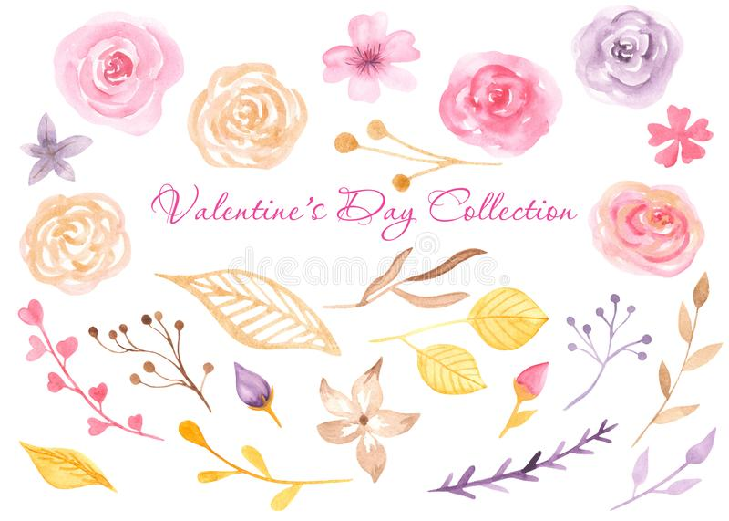 Vattenfärgrosor, sidor, blommor, knoppar, filialer stock illustrationer