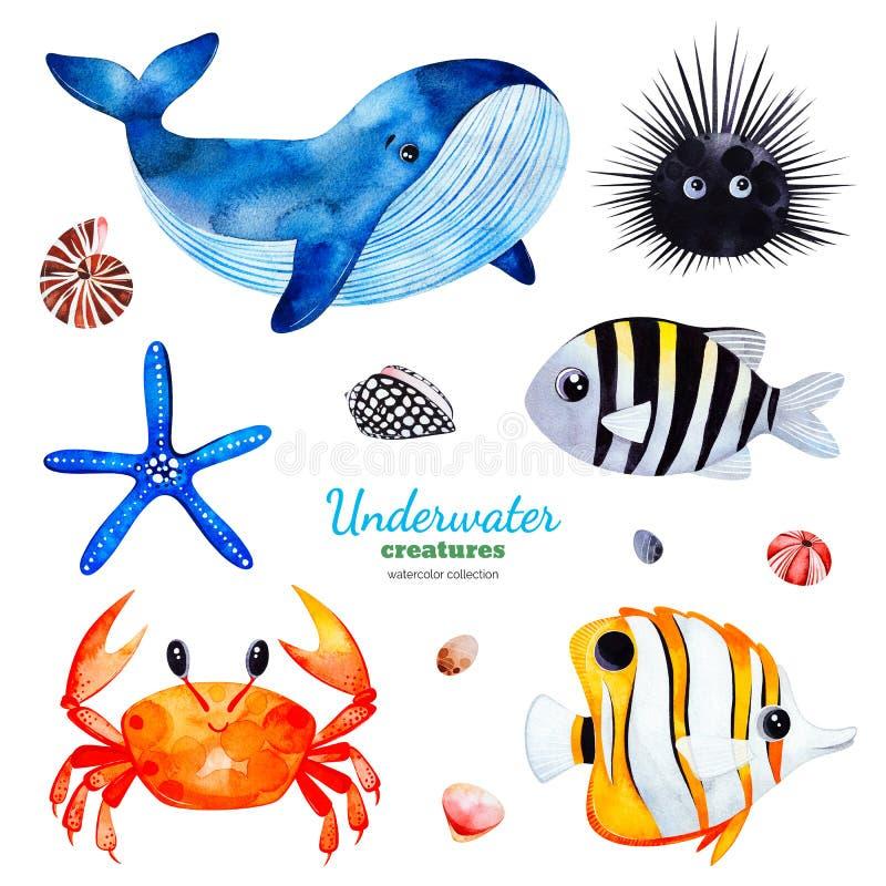 Vattenfärgsamling med mångfärgade korallfiskar skal krabba, val, sjöstjärna, gatubarn vektor illustrationer