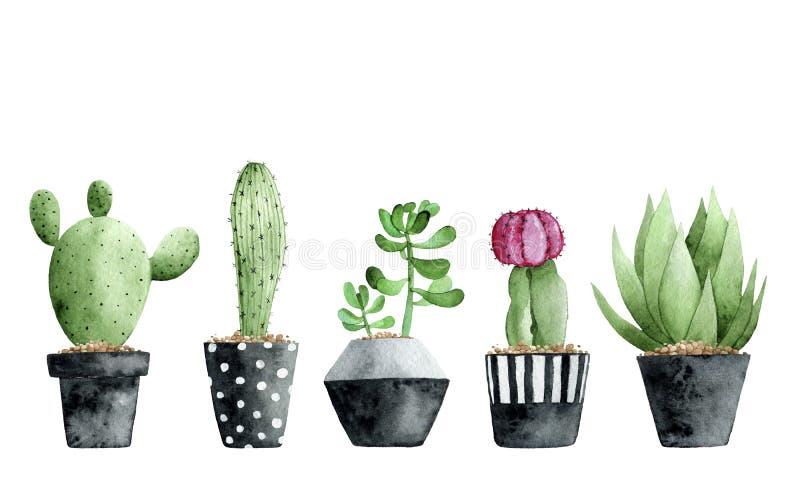 Vattenfärgsamling med suckulenter och kaktuns på vit bakgrund stock illustrationer