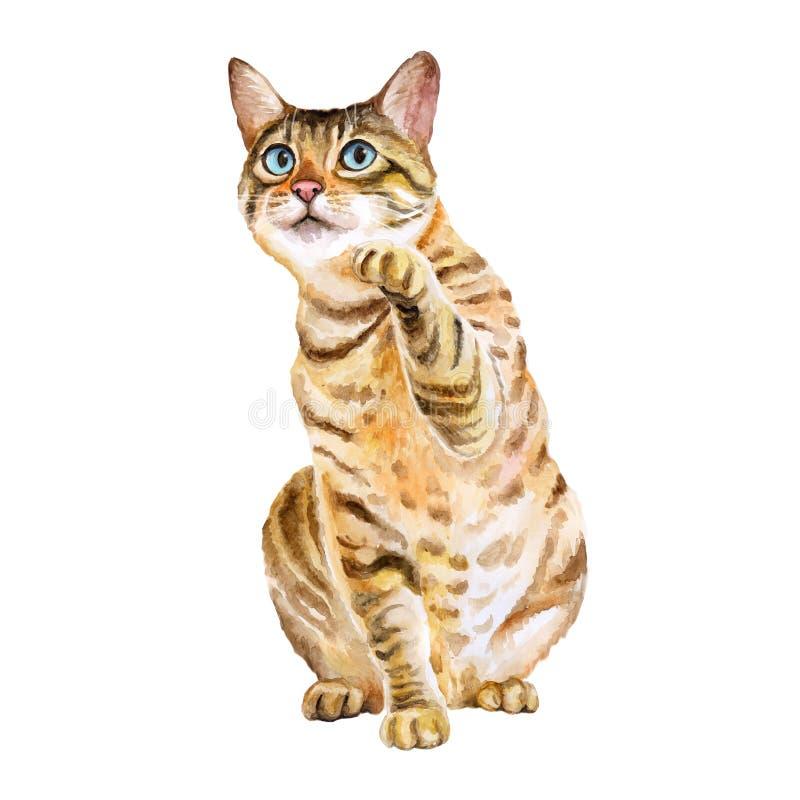 Vattenfärgstående av bengal den gulliga katten med prickar, band på vit bakgrund Hand dragit sött hemhusdjur stock illustrationer