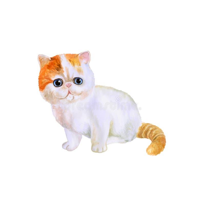 Vattenfärgståenden av Munchkin kort-lade benen på ryggen katten på vit bakgrund Hand dragit sött hemhusdjur royaltyfri illustrationer