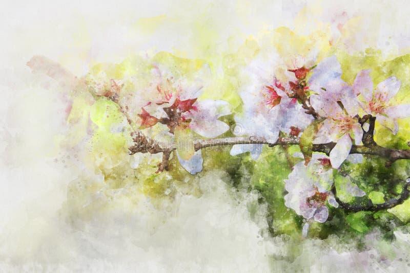 vattenfärgstil och den abstrakta bilden av det körsbärsröda trädet blommar stock illustrationer