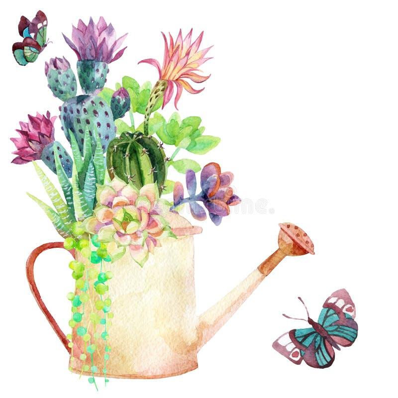 Vattenfärgsuckulenter vektor illustrationer