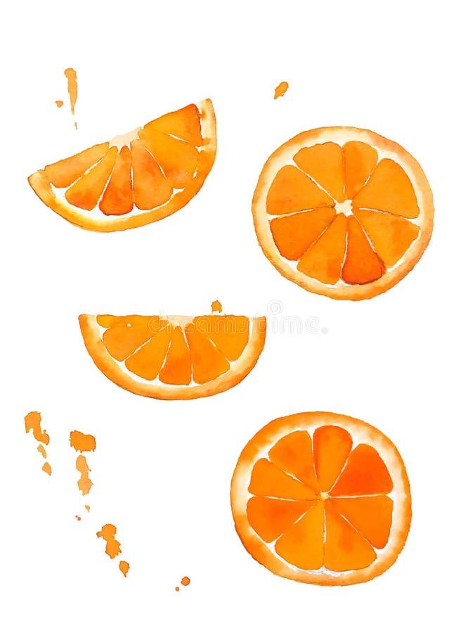 Vattenfärgteckning av apelsinen, stycken av frukt Tropisk mat f?r sommar royaltyfri foto