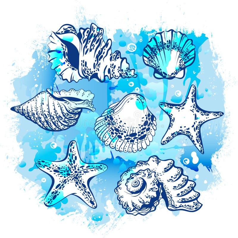 Vattenfärgteckning vid handen av olika snäckskal och sjöstjärnor stock illustrationer