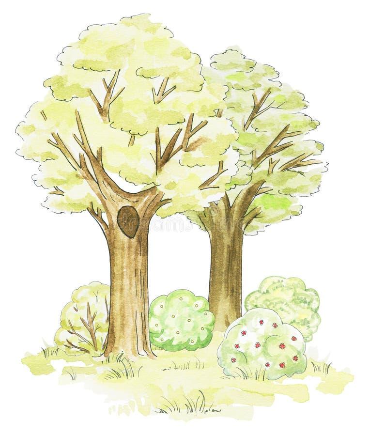 Vattenfärgträd, gräs och buskar stock illustrationer