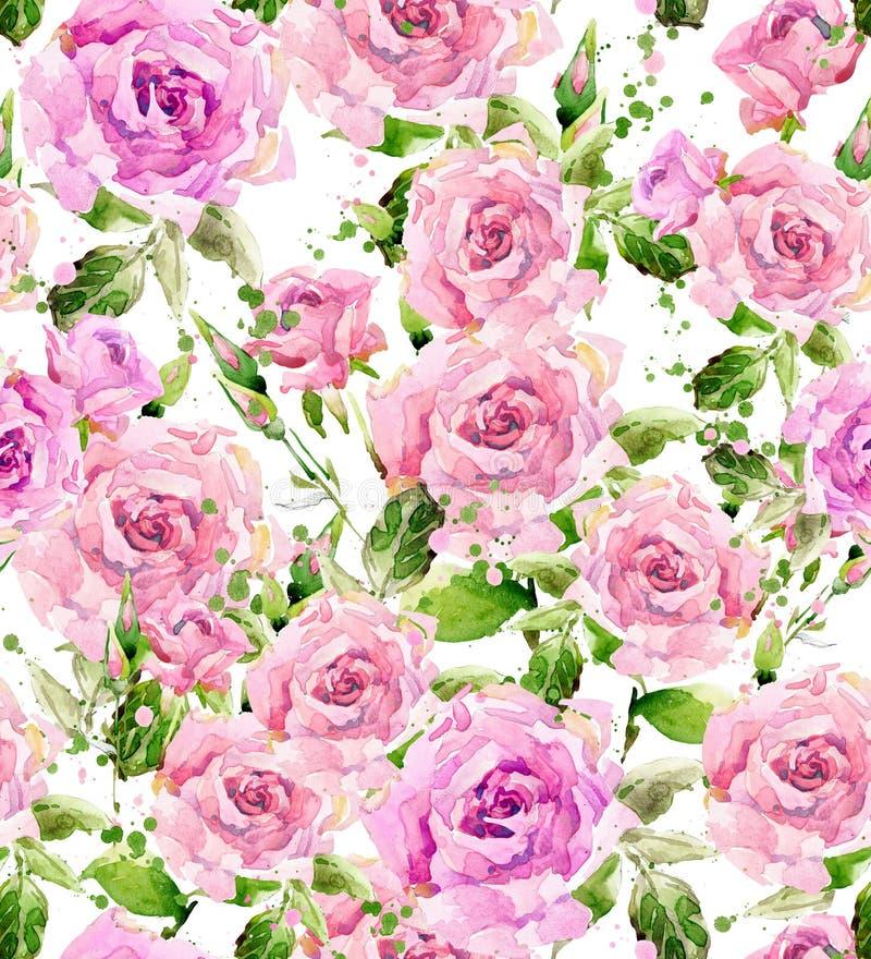 Vattenfärgträdgårdblomma Rosa illustration för vattenfärg Vattenfärgblommabakgrund royaltyfri illustrationer