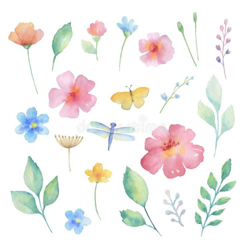 Vattenfärguppsättning av blommor royaltyfri illustrationer