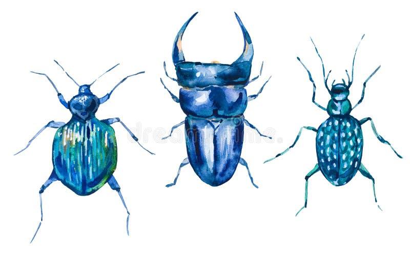 Vattenfärguppsättning av gröna skalbaggar royaltyfri illustrationer