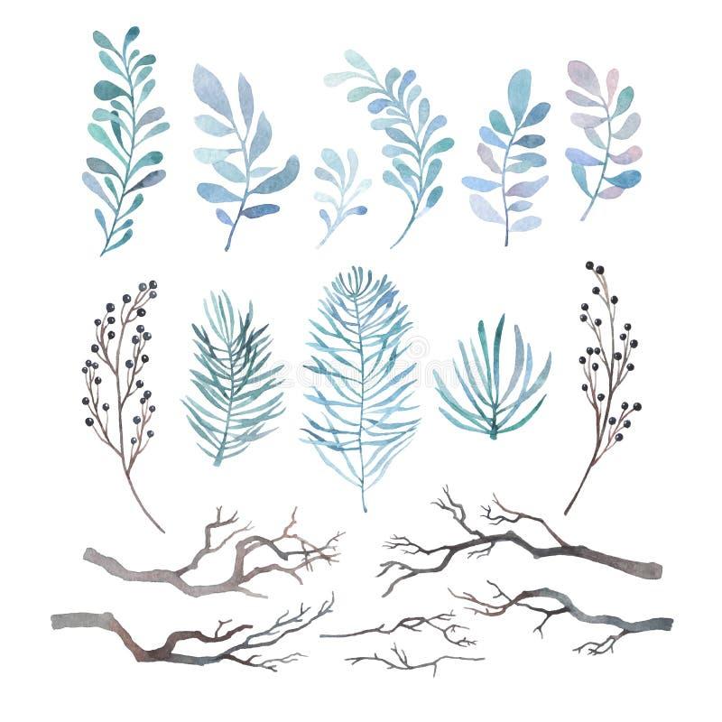 Vattenfärguppsättning av vinterfilialer vektor illustrationer