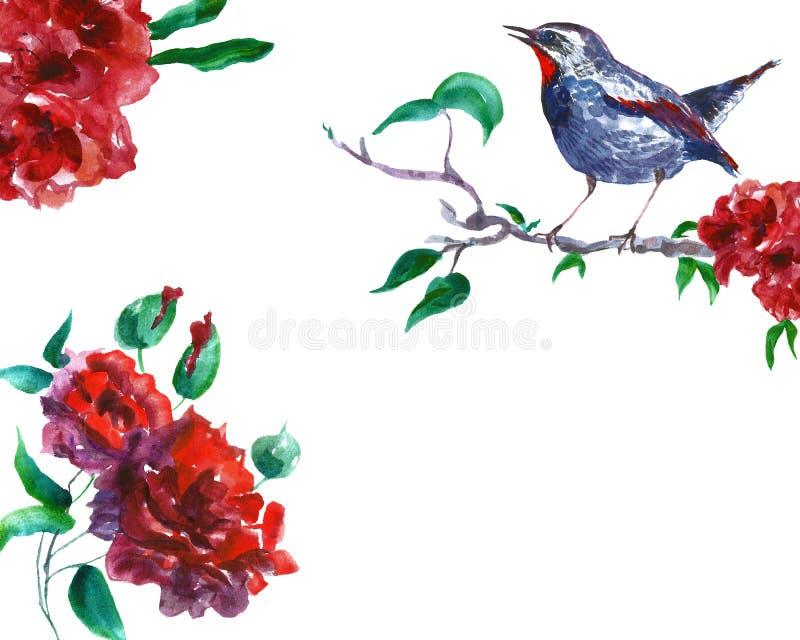 Vattenfärgvår och blom- illustration för sommar med fågelnäktergalet på trädfilial och röda blommor royaltyfri illustrationer