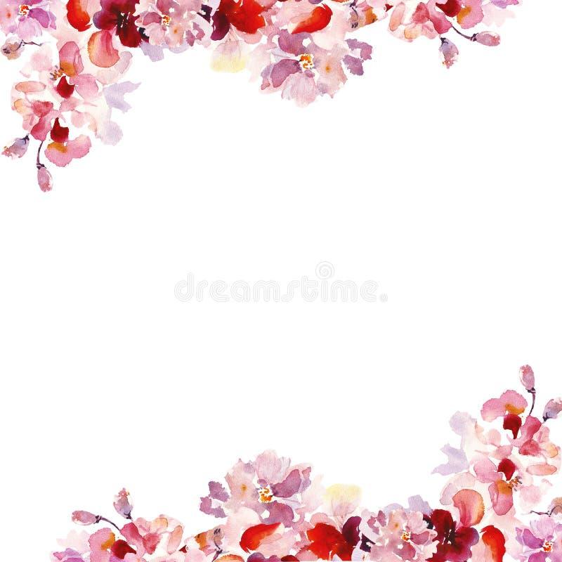 Vattenfärgvåren som blom- gränser ställde in med handen, målade rosa sakura blommor på vit bakgrund royaltyfri illustrationer