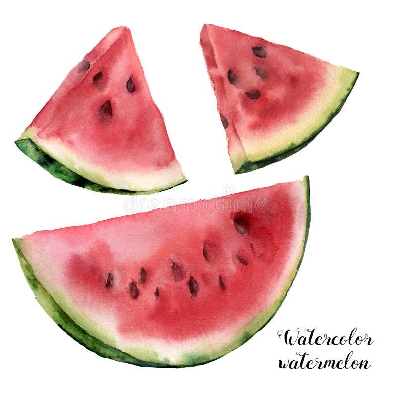 Vattenfärgvattenmelonuppsättning Räcka den målade vattenmelonskivan som isoleras på vit bakgrund söt efterrätt Matillustration vektor illustrationer