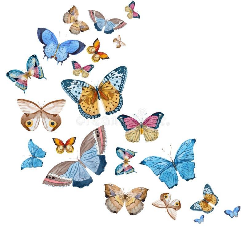 Vattenfärgvektorfjärilar stock illustrationer