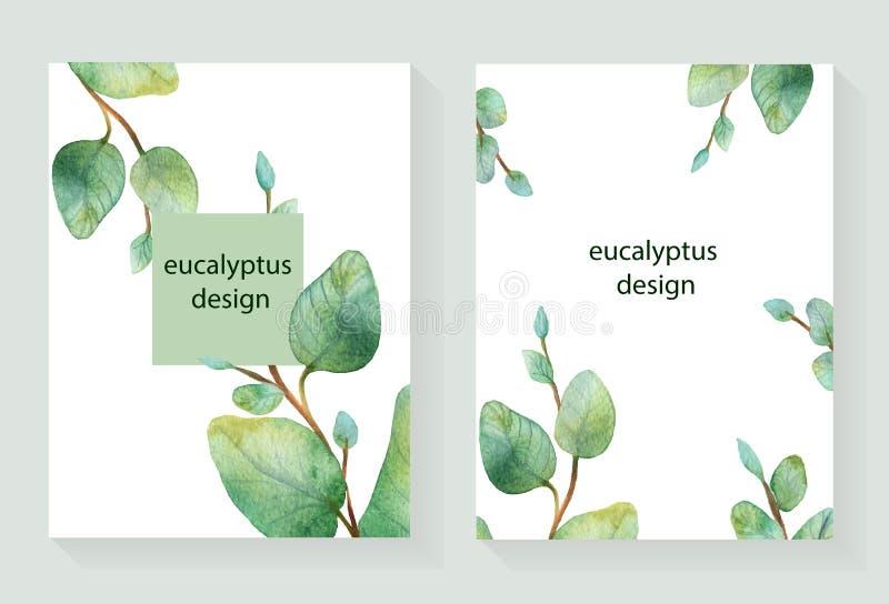 Vattenfärgvektorhanden målade det gröna blom- kortet med silverdollareukalyptuns royaltyfri illustrationer