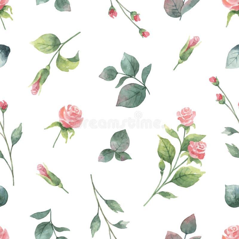 Vattenfärgvektorhanden som målar den sömlösa modellen av, steg blommor och gräsplansidor royaltyfri illustrationer