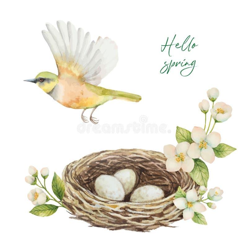 Vattenfärgvektorkrans med fågeln, rede med ägg och blommajasmin som isoleras på en vit bakgrund vektor illustrationer