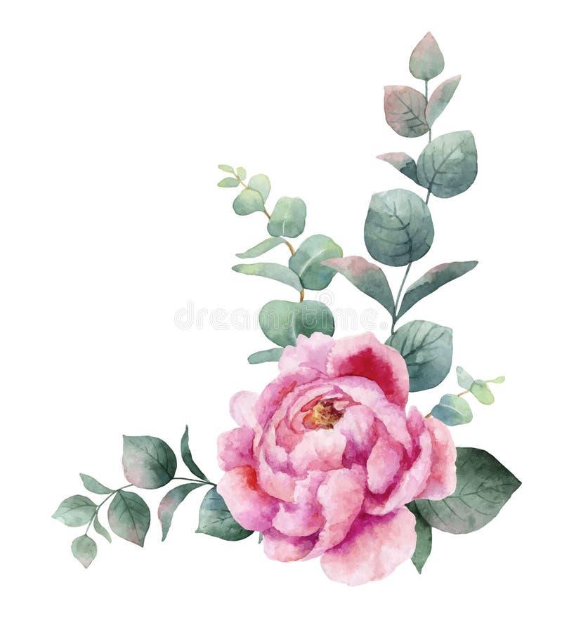 Vattenfärgvektorkransen med gröna eukalyptussidor, pion blommar och förgrena sig royaltyfri illustrationer