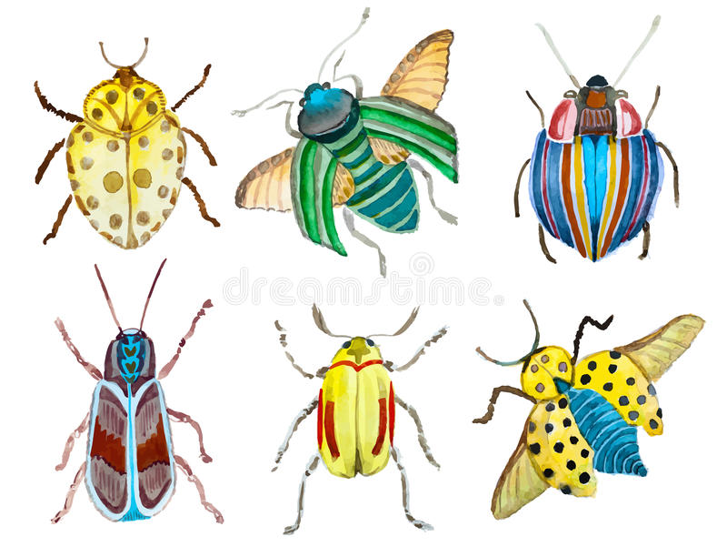 Vattenfärgvektorskalbaggar stock illustrationer