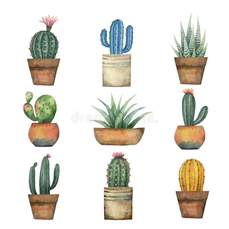 Vattenfärgvektoruppsättning av kakturs och suckulentväxter som isoleras på vit bakgrund vektor illustrationer