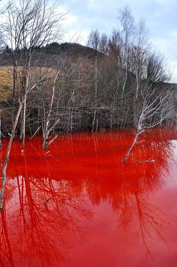 Vattenförorening av en exploatering för guld- min i Rosia Montana, Ro fotografering för bildbyråer