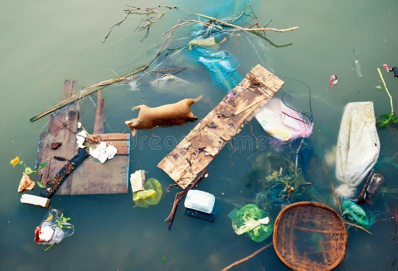 Vattenförorening med plast- avskräde och smutsar ner avfallavfalls royaltyfri fotografi