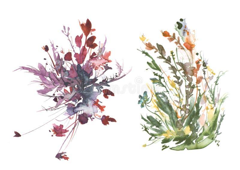 Vattenf?rgbukett av blommor, h?rlig abstrakt f?rgst?nk av m?larf?rg, modeillustration Löst gräs, blommor, vallmo, rosa färg royaltyfri illustrationer