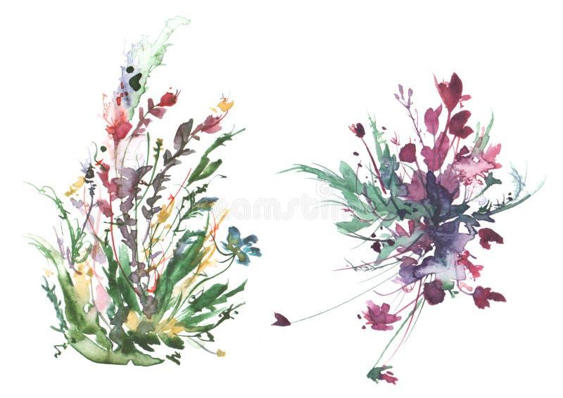 Vattenf?rgbukett av blommor, h?rlig abstrakt f?rgst?nk av m?larf?rg, modeillustration L?st gr?s, blommor, vallmo, rosa f?rg stock illustrationer