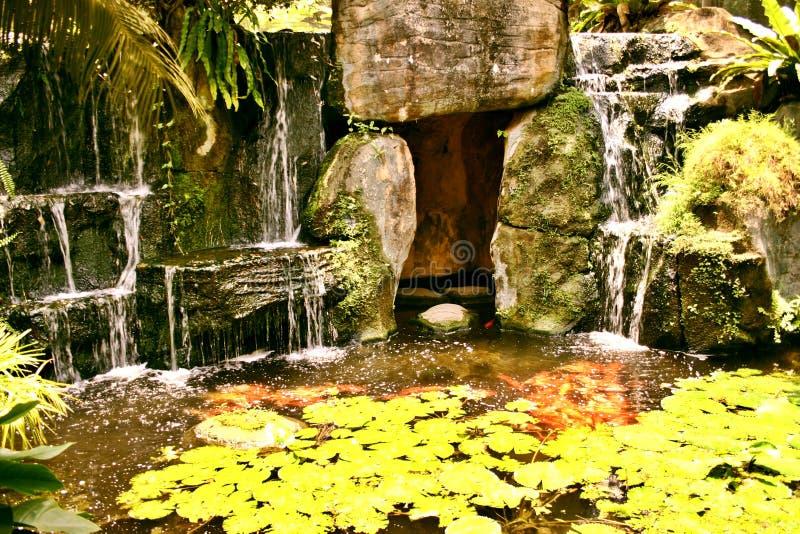 Download Vattenfall arkivfoto. Bild av vatten, vattenfall, växt - 234550