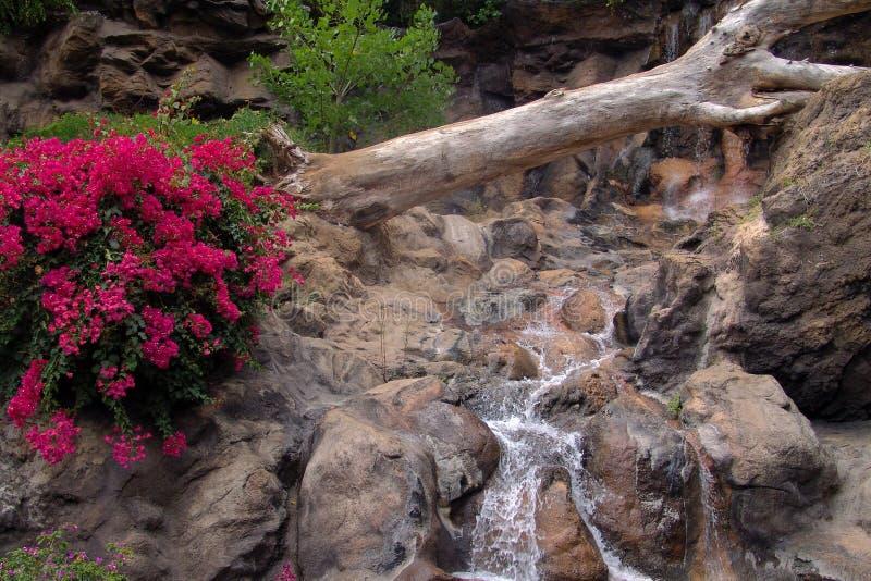Download Vattenfall arkivfoto. Bild av moss, natur, sceniskt, landskap - 278134