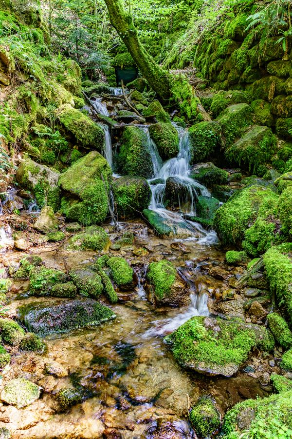 Vattenfall av Gertelsbach, Tyskland, medan fotvandra royaltyfria foton