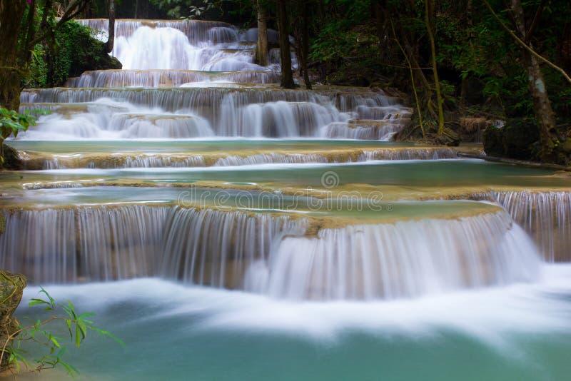 Vattenfall bland träd arkivbilder